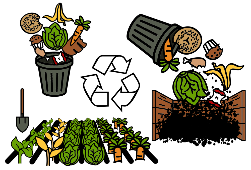 COMMON COMPETENCY 4: PROCESS FARM WASTES
